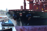 Shipping Australia Newcastle 20140310