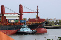 Shipping Australia Newcastle 20140301