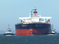 Shipping Australia Newcastle 20140208