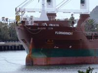 Shipping Australia Newcastle 20140206
