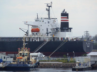 Shipping Australia Newcastle 20131123