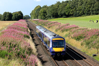 Railways Scotrail Plean 20170815