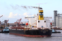 Shipping Australia Newcastle 20140223