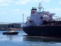 Shipping Australia Newcastle 20140207