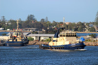Shipping Australia Newcastle 20140225